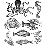 Tim Holtz Cling Stamps 7''X8.5''-Sea Life