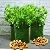 Tierra Garden 50-1040 Haxnicks Potato Patio Planter and Grow Bag, 3-Pack