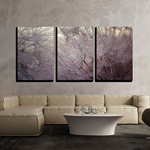 Cheap  wall26 - 3 Piece Canvas Wall Art - Abstract Macro Photo with..