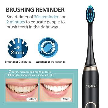 Cepillo Dental Eléctrico, Cepillo Dental Sónico Recargable Seago con 40000 Toques por Minuto, Bimotor Patentado, IPX7 a Prueba de Agua, ...