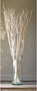 """White Bleached Willow Branches - 48""""H, 3 Branches"""