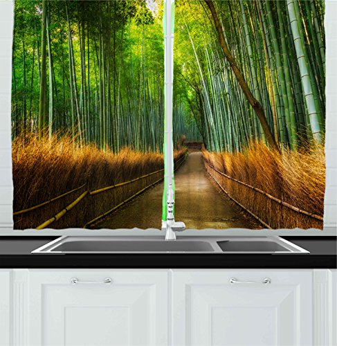 Ambesonne Kitchen Decor Collection, Bamboo Asian Rain Forest Nature Pathway Vibrant Colored Print View Scenery Image , Window (Kitchen Collection Bamboo)