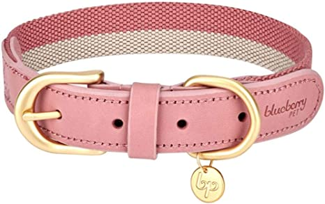Blueberry Pet Vintage Polyester Webbing and Genuine Leather Combo Dog Collars | Amazon