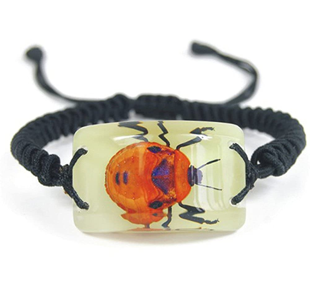 Glowing in dark Real bug Bracelet Lady Bug Bracelet