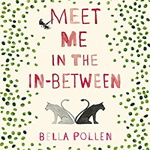 Meet Me in the In-Between Audiobook