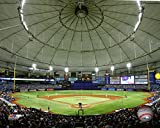 "Tampa Bay Rays Tropicana Field 2015 MLB Stadium Photo (Size 8"" X 10"")"