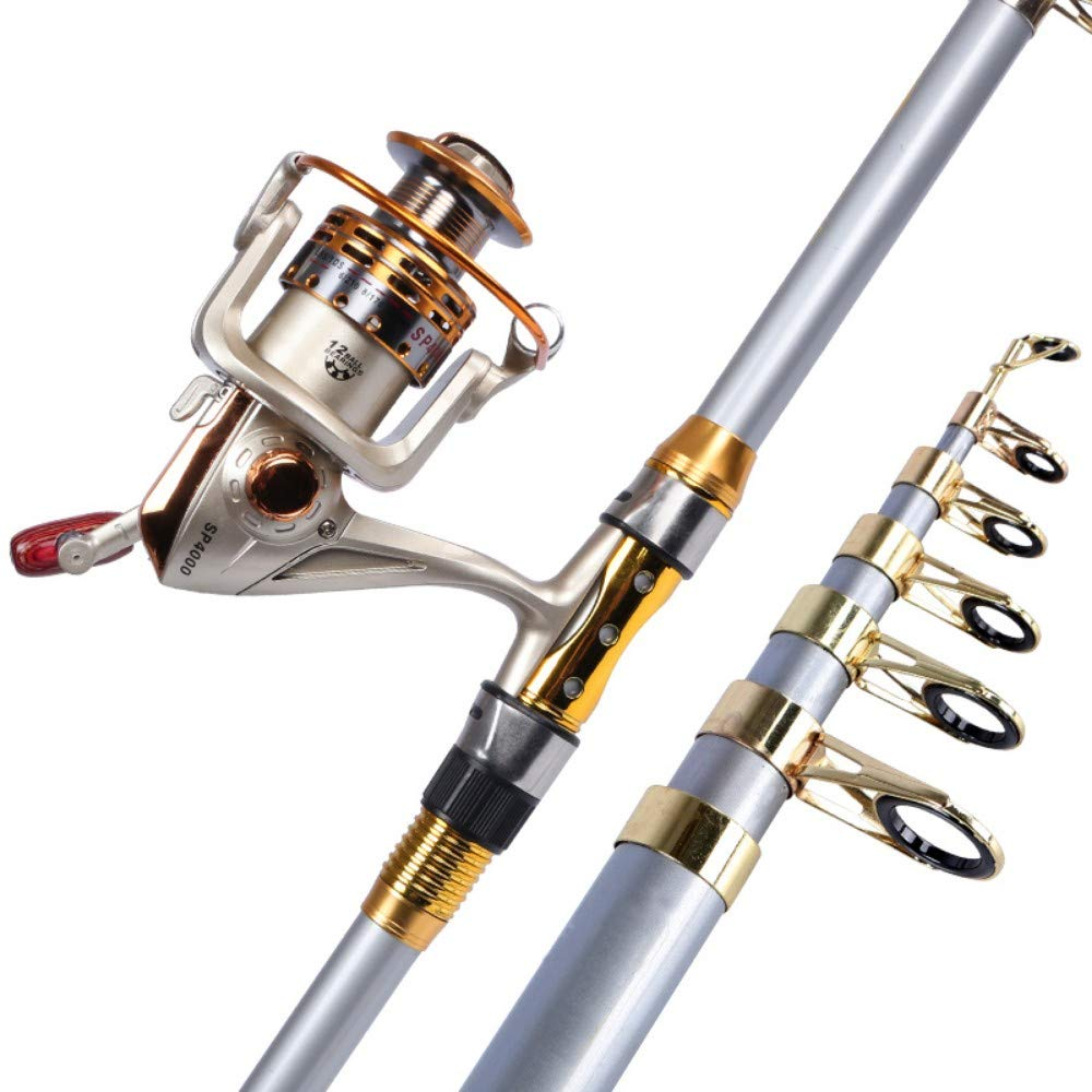 3.0m  WANGGGG Canne à Pêche Canne à Pêche Canne à Pêche Canne à Pêche à Long Manche Fh5000 Roue en Métal, 2.1M