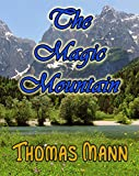 Image of The Magic Mountain: First Edition (Barvas Fiction)