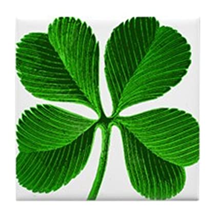 Image result for small 4 leaf clover pictures