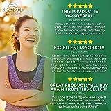 Zazzee Grape Seed Extract 20,000 mg Strength, 180