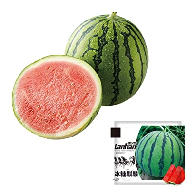 10g/Pack Watermelon Seeds for Yard Vegetable Seeds for Planting Home Garden : Garden & Outdoor