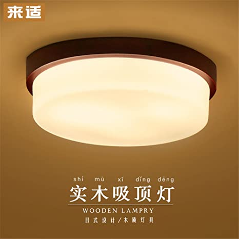 Modern LED Pendant Flush Mount Ceiling Fixtures Light Simple