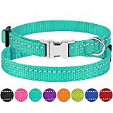 CollarDirect Small Dog Collar Nylon Reflective Puppy Collar Adjustable with Metal Buckle Black Pink Mint Green Lime Orange Red Purple Blue (Neck Fit 7'-11', Mint Green)