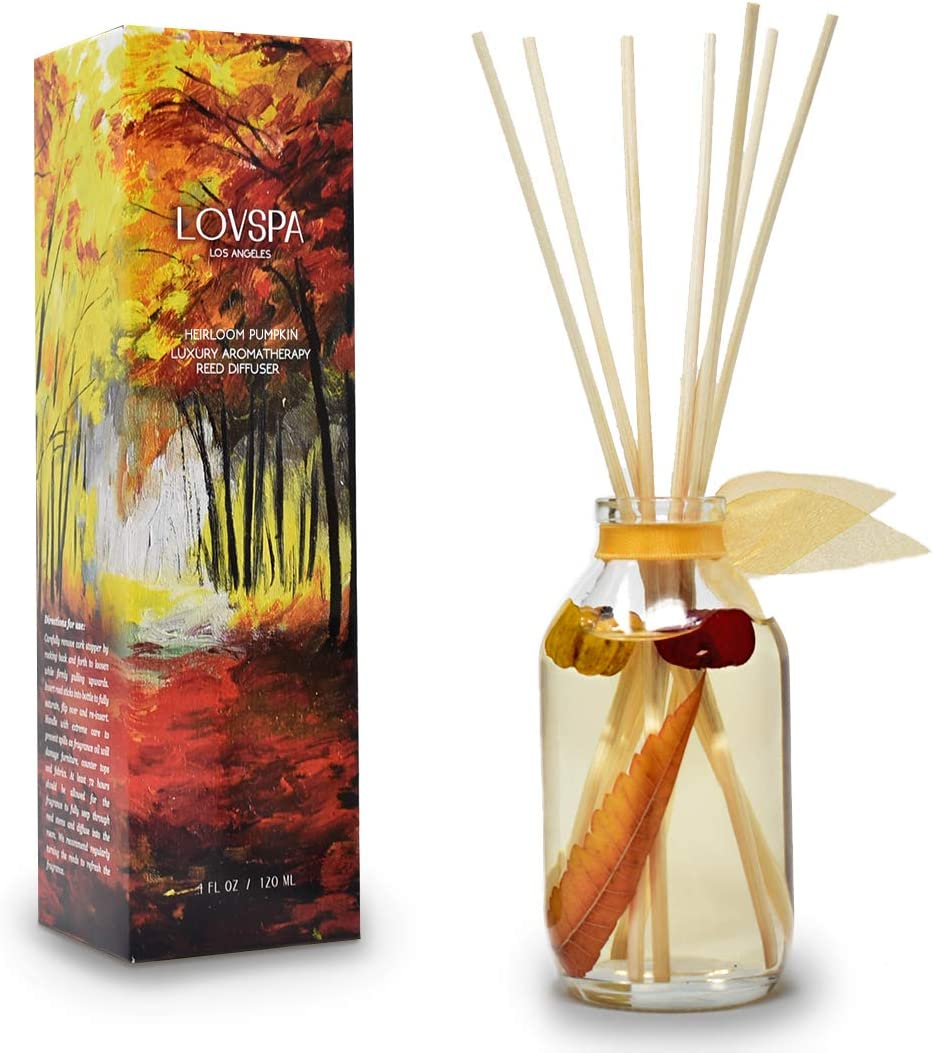 LOVSPA Heirloom Pumpkin Reed Diffuser Sticks Set with Cinnamon, Nutmeg, Warm Clove & Creamy Vanilla, Mini Pumpkin Pods and Fall Leaves Inside The Bottle, Comforting Scent for Autumn