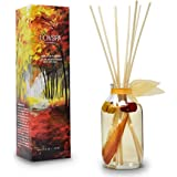 LOVSPA Heirloom Pumpkin Reed Diffuser Sticks Set with Cinnamon, Nutmeg, Warm Clove & Creamy Vanilla, Mini Pumpkin Pods…