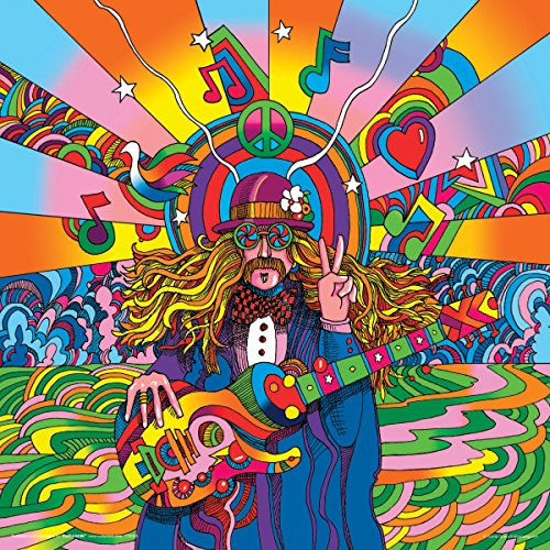 howie green hippie musician decorative psychedelic pop modern art poster print 12 12. Black Bedroom Furniture Sets. Home Design Ideas