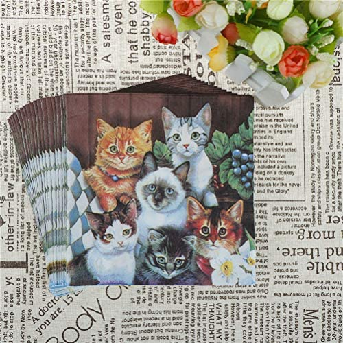 33cm x 33cm Ti-Flair Pack of 20 Napkins // Serviettes 3ply Black Cats With China