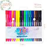 18 Pack Dual Brush Calligraphy Marker Pens for