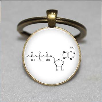 Química keychain- latón ATP - Llavero de Bioquímica Biología ...
