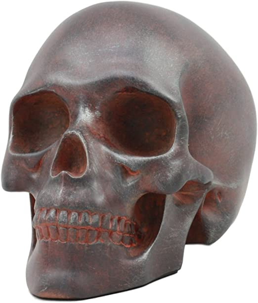 RARE Human Skull Cast In SOLID BRASS LIFE SIZE BRASS METAL SKULL Polished