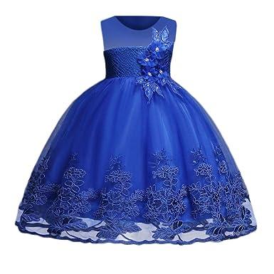Cinnamou Vestido de Niños Niña Encaje Flor Princesa Vestidos de Bordado Malla Tutú Vestido de Fiesta Elegantes Vestido de la Dama de Honor: Amazon.es: Ropa ...