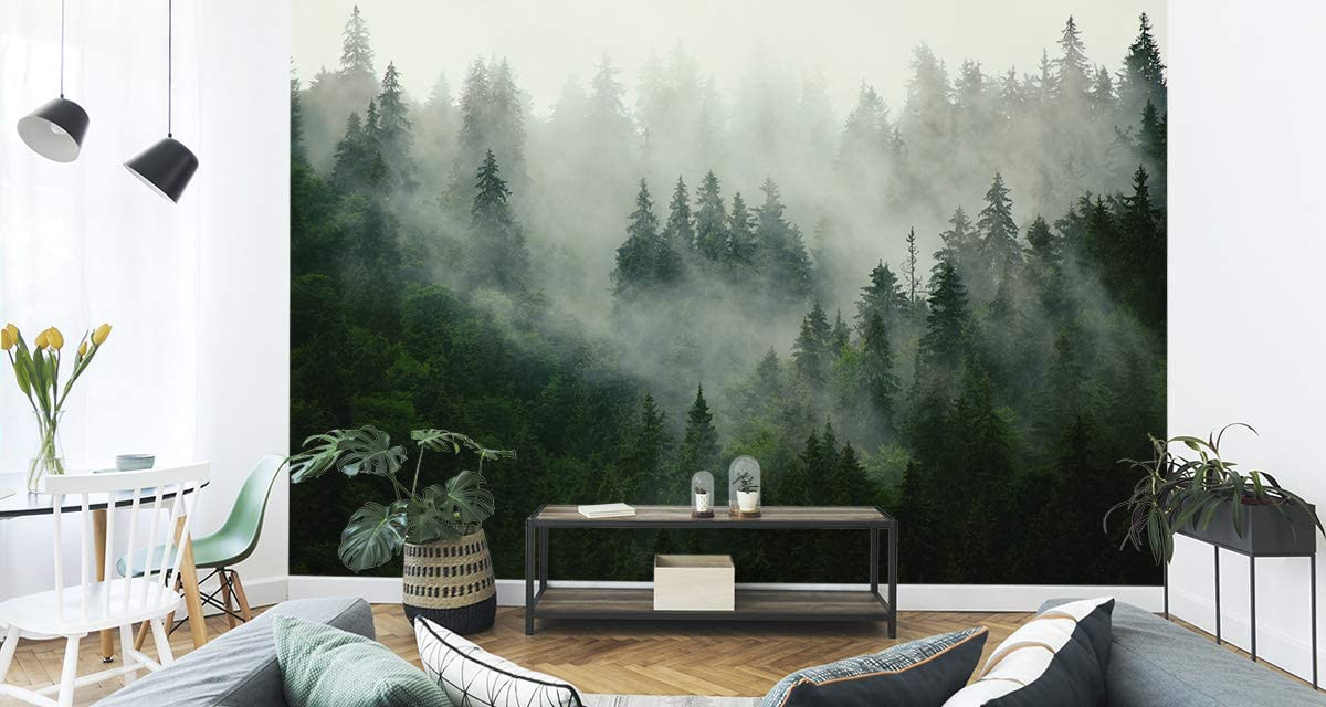 167720496 Muralo Papier Peint For/êt dans Le Brouillard 60 x 90 Vinyle Arbres Faune et Flore Mystique