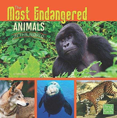 The Most Endangered Animals in the World (All About Animals) - Endangered Wildlife Animals