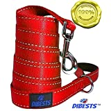 Dog Leash Heavy Duty and Premium Quality,Reflective,Padded Handle - 6 ft Long 1 Inch Wide Perfect for Everyday Training ,Walking, Running Best For XL Large Medium And Small Dogs