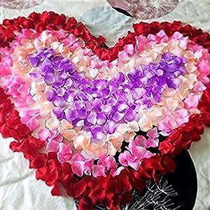 CATTREE Rose Petals, 3000 PCS Artificial Petals Silk Wedding Flower Decoration 2