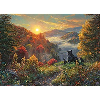 Cobblehill 80001 1000 pc New Day Puzzle, Various: Toys & Games