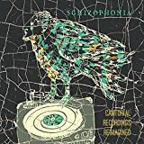 Cantorial Recordings Reimagined by Schizophonia (2014-08-03)