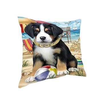 Amazon.com: Mascotas Playa Mayor Swiss perro de montaña ...