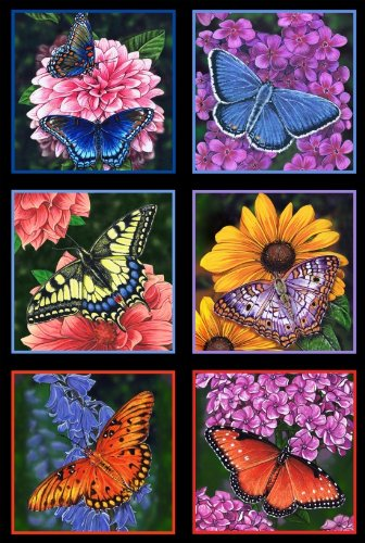 Flowers Cotton Quilt Fabric (1 Panel Butterfly Garden by Marilyn Barkhouse for Elizabeth Studios 100% Cotton Quilt Fabric ELS6400 Black)