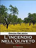 L'incendio nell'oliveto