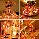 2Pack Halloween Decor Garland for Home, 9.8Ft Fall