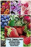 Fruit Combo Pack Raspberry, Blackberry, Blueberry, Strawberry, Apple (Organic) 525+ Seeds 658921943359 Free 3 Flower Packs