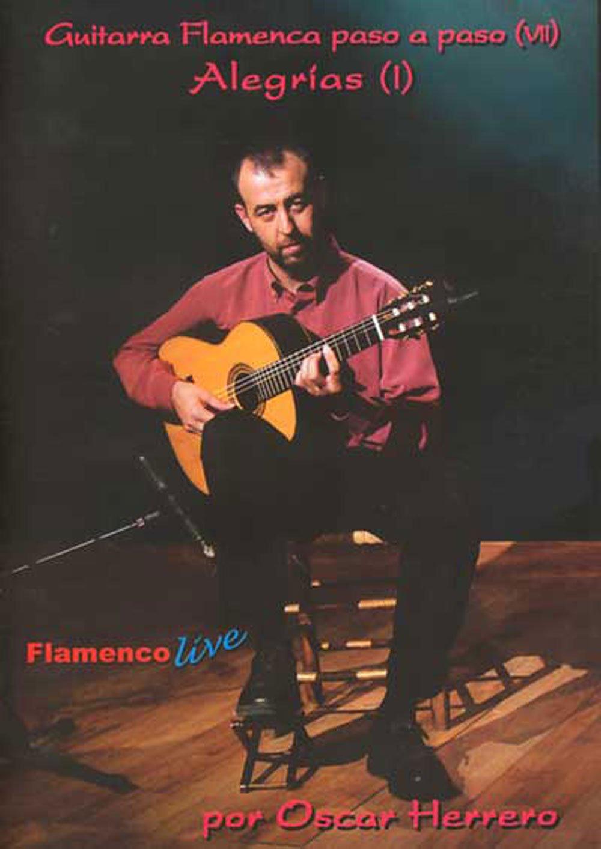 Guitarra Flamenca paso a paso 7