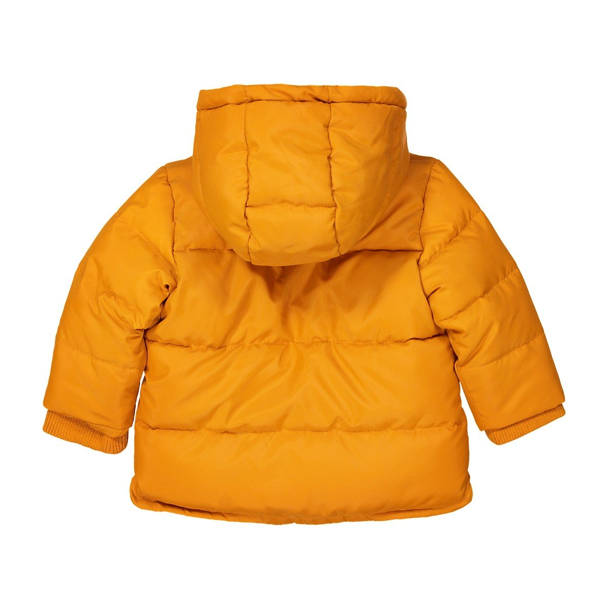 3 Months-3 Years La Redoute Collections Big Boys Hooded Padded Jacket