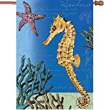Premier 52942 House Illuminated Flag, Swimming Seahorses, 28 by 40-Inch Review