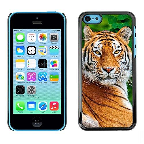 Ziland / Premium Slim HD plastique et d'aluminium Coque Cas Case Drapeau Cover / Big Cat Nature Animal Africa / Apple iPhone 5C