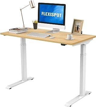 FLEXISPOT スタンディングデスク 組立簡単 電動式昇降デスク 高さ調節 人間工学 ゲーミングデスク パソコンデスク セット EC9WM