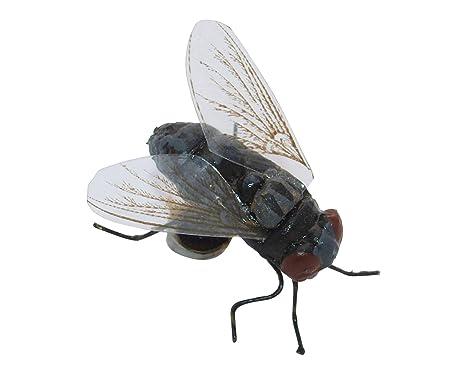 Stube papillon puck grigio con magnete calamita insetti