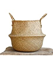 Woven Baskets, Seagrass Plant Pot Belly Basket for Indoor Plants by Qliwa