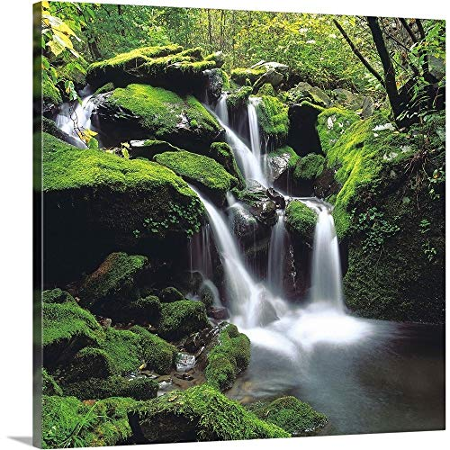 (Great Big Canvas Gallery-Wrapped Canvas Entitled Misty Waterfall Over Moss Covered Rocks 16