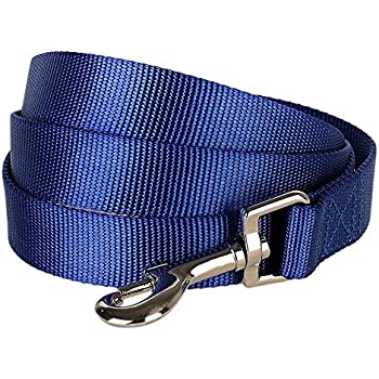 """Blueberry Pet 12 Colors Durable Classic Dog Leash 4 ft x 1"""", Royal Blue, Large, Basic Nylon Leashes for Dogs"""