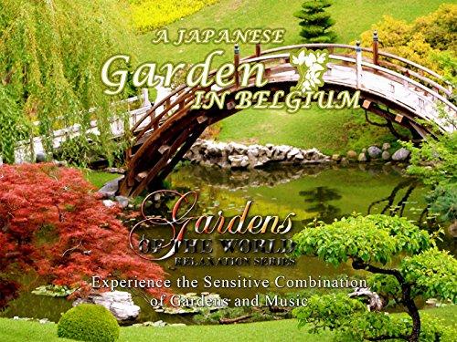(A Japanese Garden in Belgium)