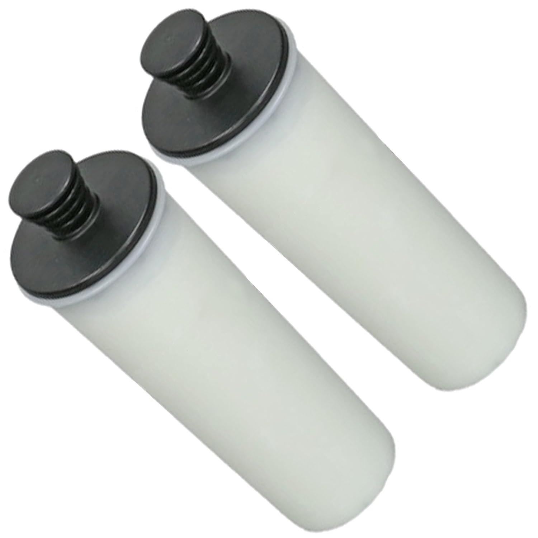 Spares2go cartuccia filtro anticalcare per Karcher SC3pulitore a vapore (confezione da 2)