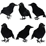 FUNPENY Halloween Black Feathered Crows, 6 Pack Lifelik Halloween Decoration Birds with Real Feather