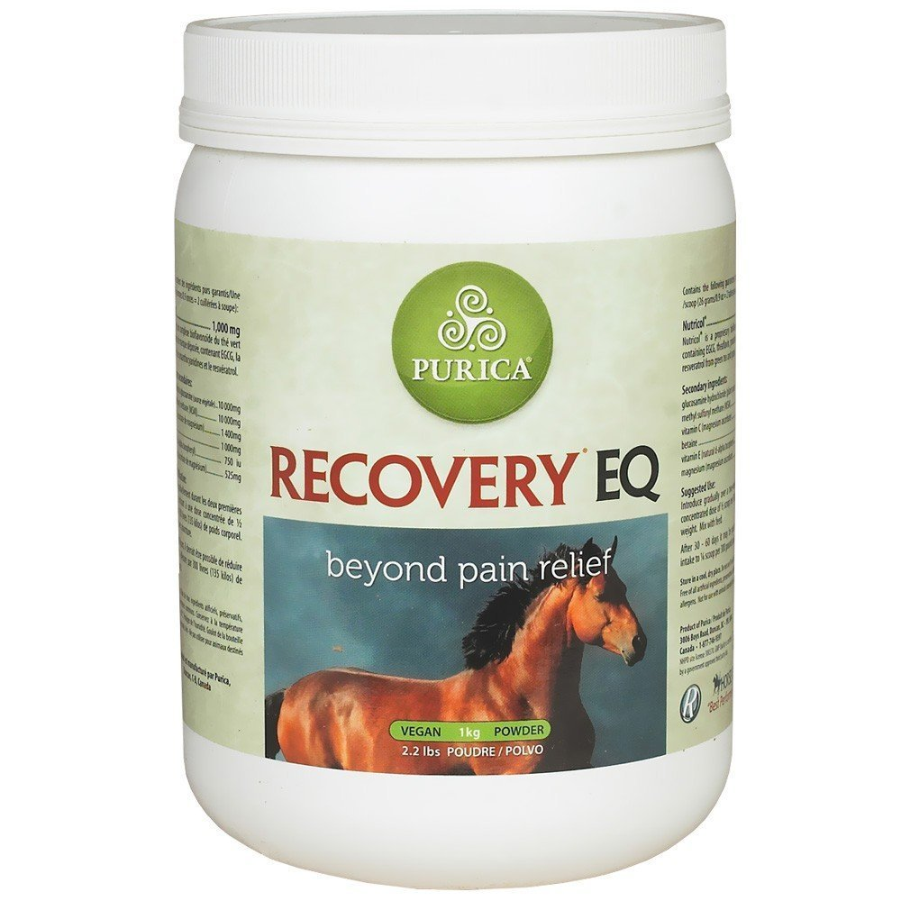 Recovery EQ Joint Health & Anti-Inflammatory 2.2lb by Recovery EQ