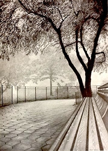 Central Park by Pencilworks Studio- Pencil Drawings by Jerry Winick